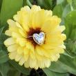 Little Heart Pendant